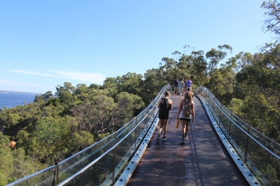 Two study abroad students walk along the glass bridge in Kings Park, Perth, WA.