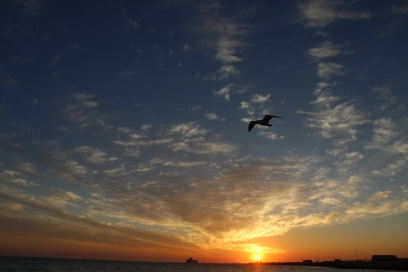 Flying through the clouds, Bather's Beach, Fremantle, WA.