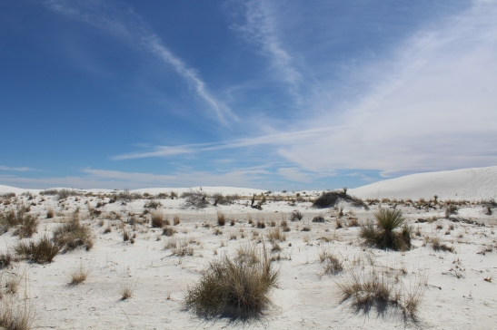 The best way to feel like you're on another planet is to visit White Sands National Monument in New Mexico.