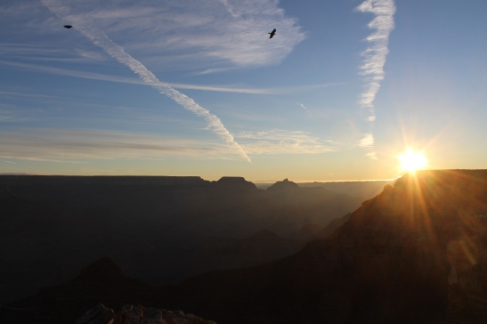 Early bird gets the worm, sunrise at Grand Canyon National Park.